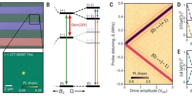 Universal coherence protection in a solid-state spin qubit