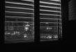 roller blinds dubai