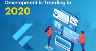 Why Flutter App Development is Trending in 2020