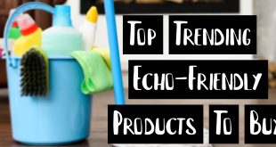 Top Trending Echo-Friendly Products To Buy